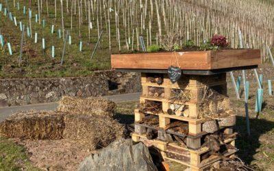 Zimmer frei – Statt Gäste werden momentan Bienen beherbergt